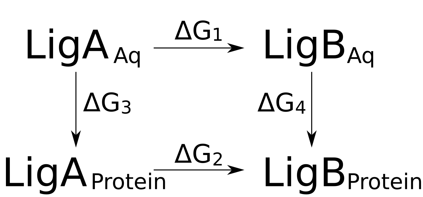 Ligand modification free energy calculations